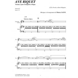 PDF - Ave Riquet - CAENS Thierry
